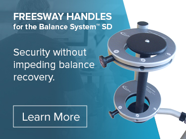 Freesway handles for the Balance System SD